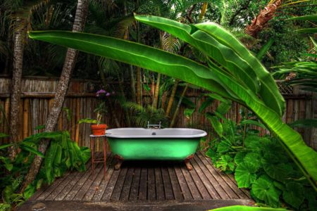 forest bath at goldeneye hotel jamaica caribbean