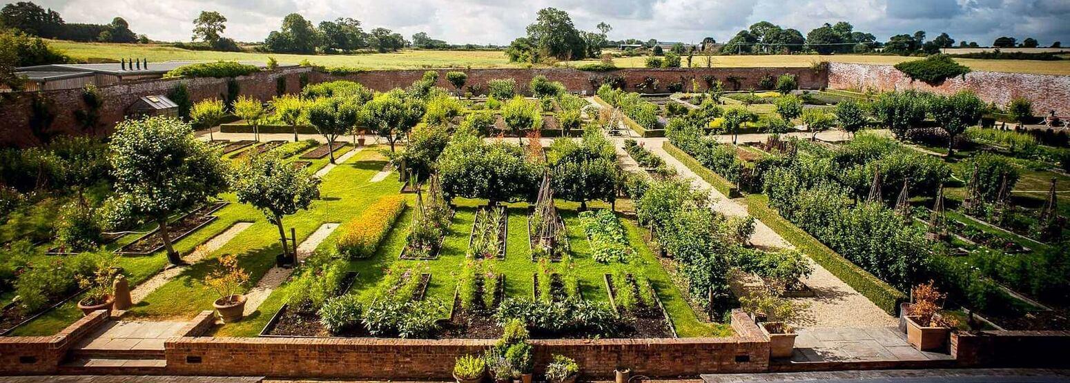garden at babington house somerset uk