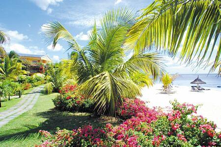 beach at le victoria hotel mauritius