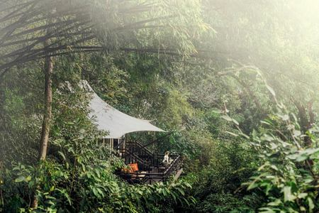 treehouse at four seasons tented camp resort chiang rai
