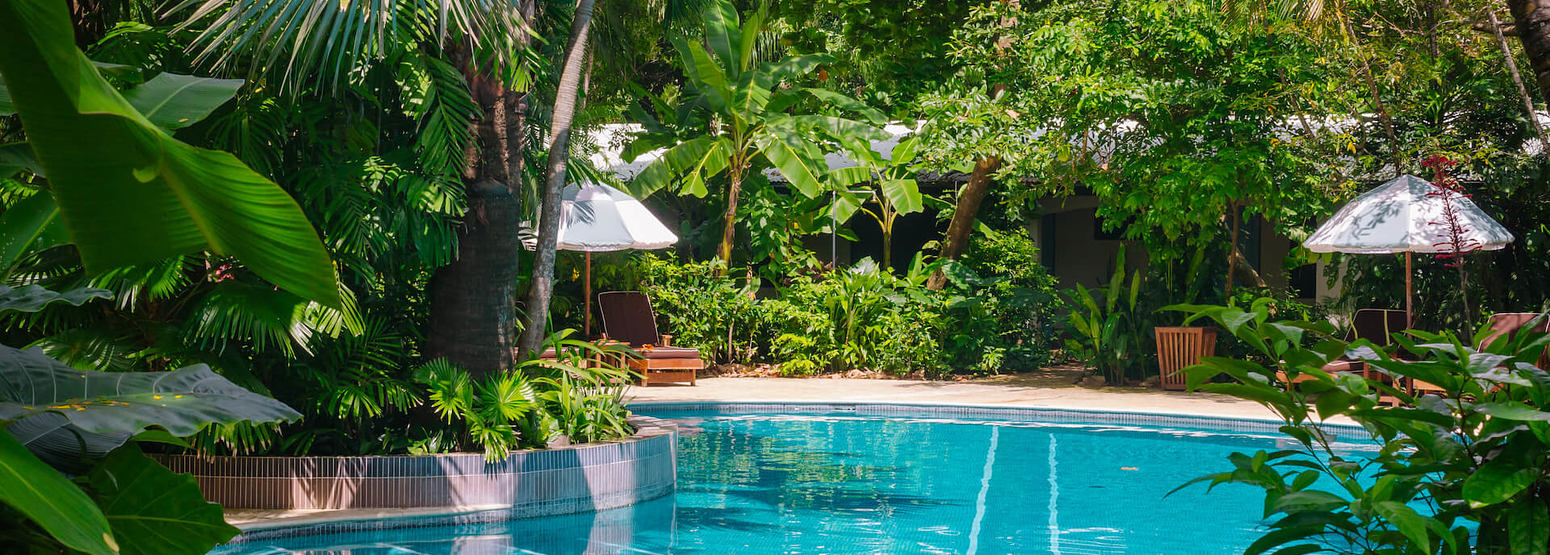 pool at harmony hotel costa rica