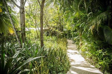 garden at harmony hotel costa rica