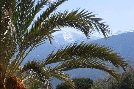 mountain at la roseraie hotel morocco