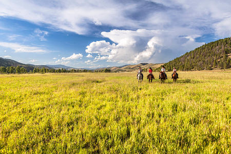 horse riding at rock creek rach montana usa
