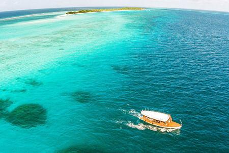 aerial view of beach at palm beach resort and spa maldives