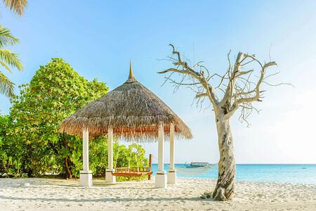 beach hut at palm beach resort and spa maldives