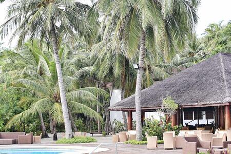 pool at palm beach resort and spa maldives