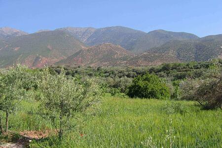 hills at la roseraie hotel morocco