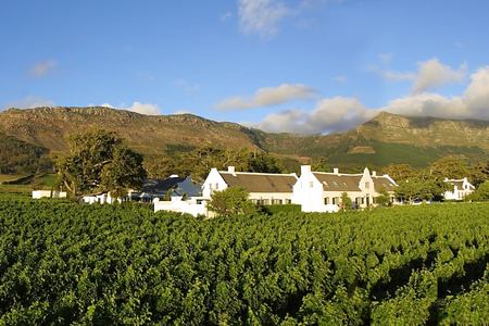 Steenberg Hotel and Vineyards south africa