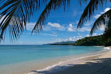 beach at laluna hotel caribbean