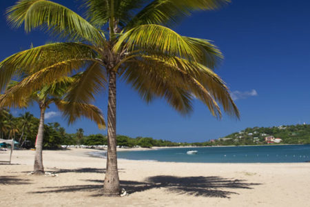 beach at rendezvous st lucia at rendezvous resort st lucia caribbean