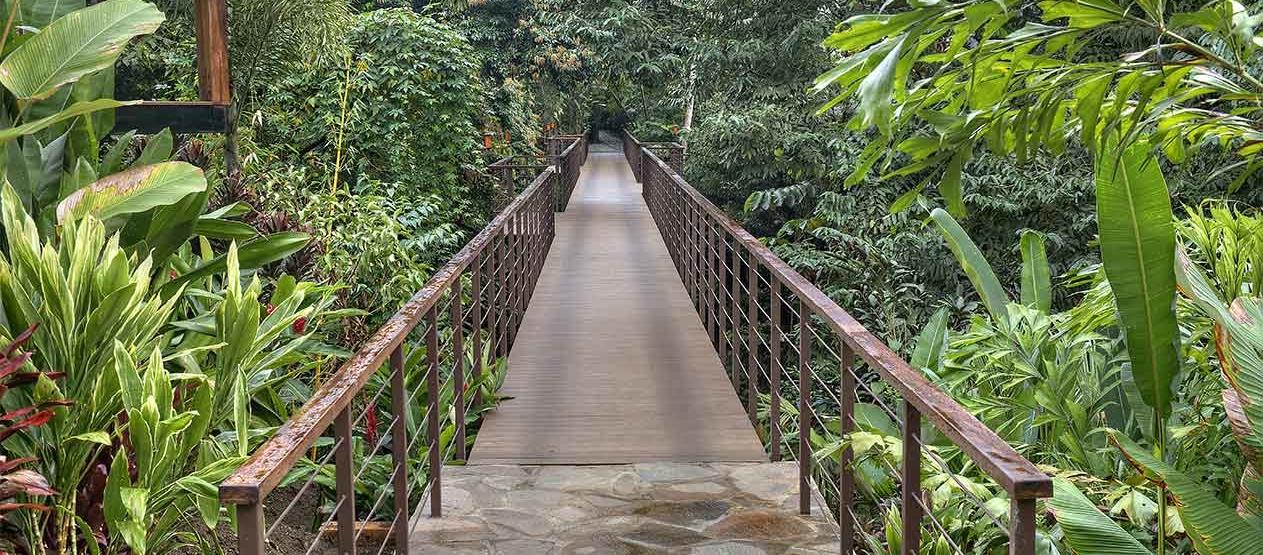 canopy walkway at nayara springs hotel costa rica
