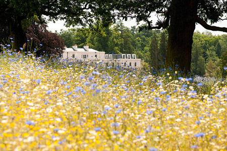 gardens at coworth park england uk