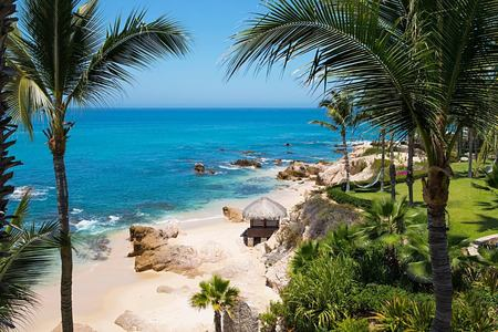 gardens at one and only palmilla mexico