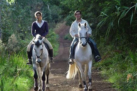 horse riding at Gaolosol Resort Madiera