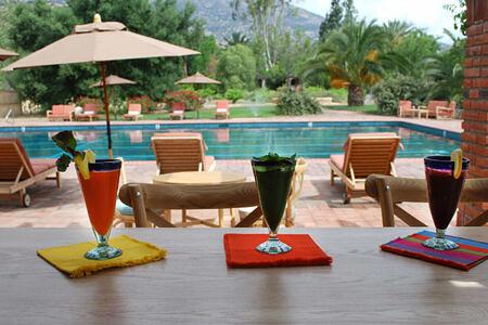 juice bar at rancho la puerta spa retreat mexico