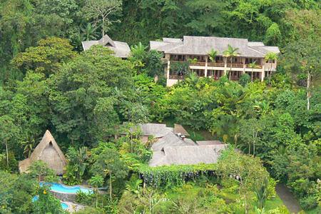 lost iguana at lost iguana hotel costa rica