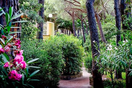 lush gardens amid pine trees at Pineta Hotel Italy