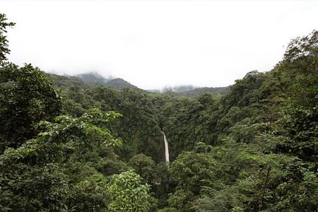 nearby waterfall at lost iguana hotel costa rica