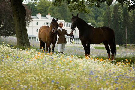 horse riding in the 200 acres of parkland at coworth park england uk