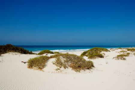 saadiyat beach at st regis island resort abu dhabi