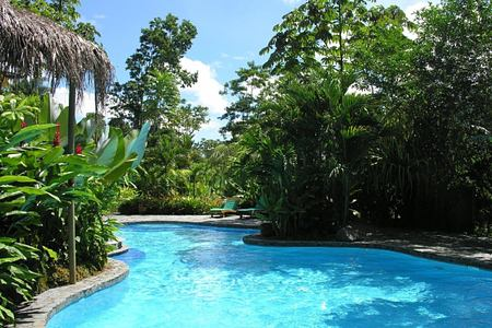 swimming pool at lost iguana hotel costa rica