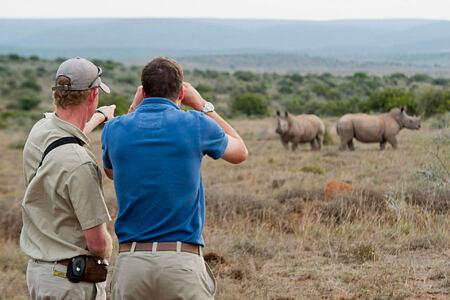 Big Game Walk with two men looking at rhino at Kwandwe South Africa