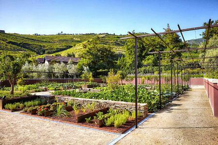 Organic Garden at Six Senses Douro Valley Portugal
