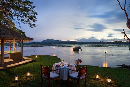 Romantic Dining at lake at Chaaya Village Sri Lanka
