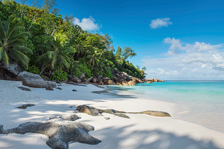 Beach Panorama at Constance Lemuria Resort Seychelles