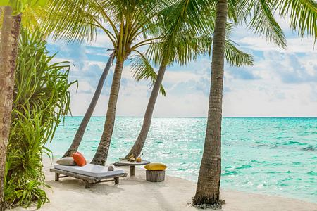 Beach and palms at Como Maalifushi Maldives