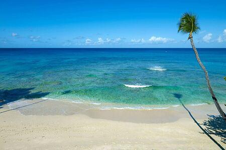 Beach at Tamarind Barbados