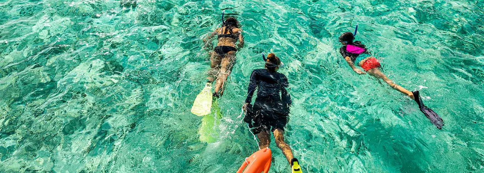Snorkeling at Como Maalifushi Maldives