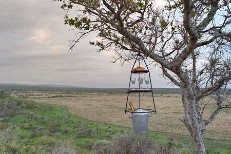 View across veld at Phinda South Africa