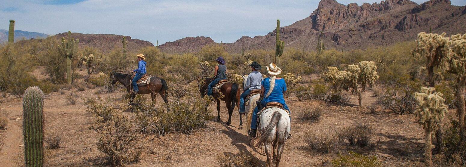 White Stallion Ranch Arizona USA