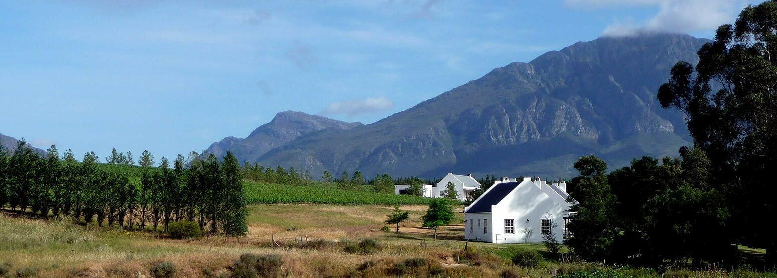 Road Biking in Cape Town through the Winelands