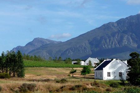 Road Biking in Cape Town through the Winelands